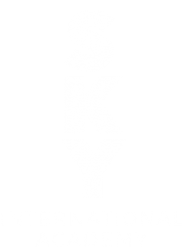 SKY International Academy